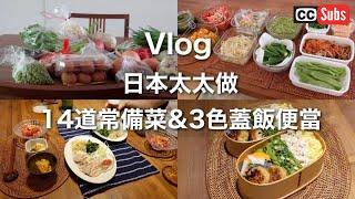 【Vlog】日本太太做常備菜 / 11種蔬菜&3道肉品 / 3色蓋飯便當 / 雞胸肉豆腐漢堡排 / 煮豚 / 台北生活