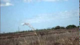 flat land to grow rice in Nicaragua Tipitapa