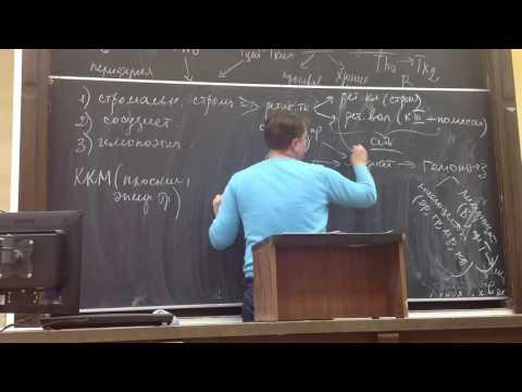Лекция Гистология | №10 #2 Иммунная система