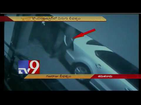 Coimbatore Elephant creates panic in Kovaipudur - TV9