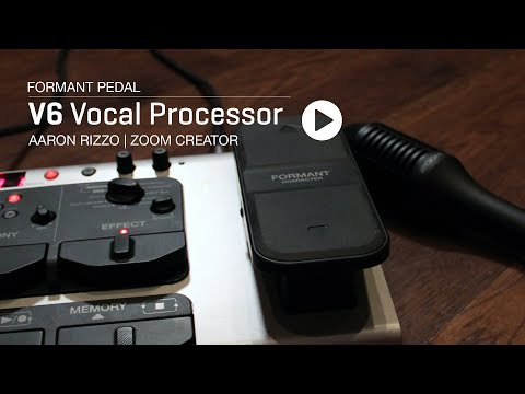 The Zoom V6 : Aaron Rizzo - Formant Pedal