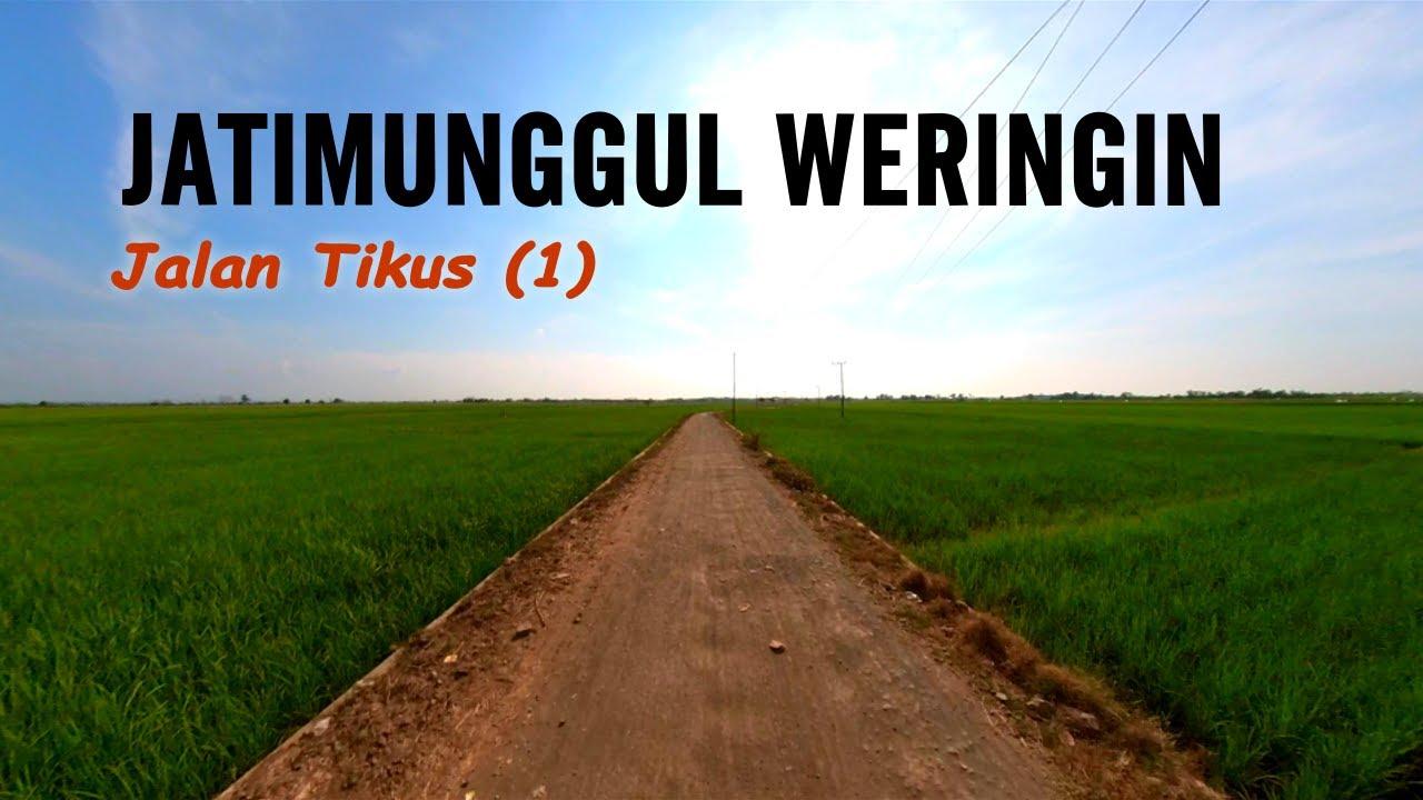 OTW : Jalur Jatimunggul - Sumbon // JALAN TIKUS (1)