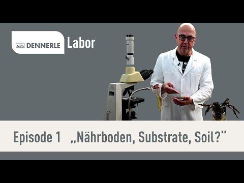 Was ist Nährboden und warum kommt das in mein Aquarium? | DENNERLE Labor | Episode 1