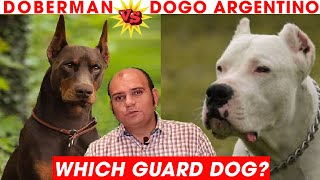 Doberman Vs Dogo Argentino Puppy Dog Breed Comparison in Hindi | Which is Better? Baadal Bhandaari