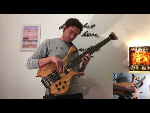 Theme From Schindler's List (bass Cover)
