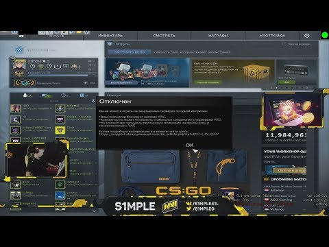 Simple got VAC BANNED on live stream