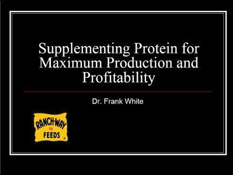 Supplementing Protein for Maximum Production and Profitability Webinar w/ Dr. Frank White