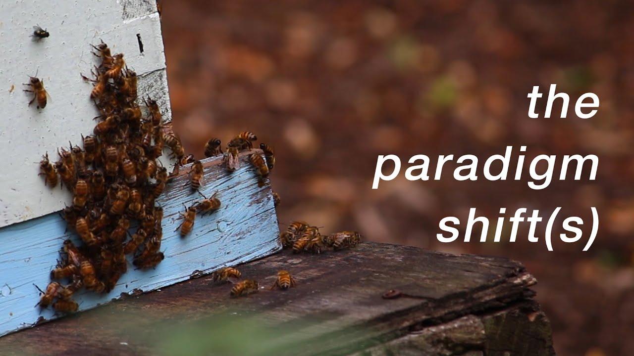 The Paradigm Shift(s)