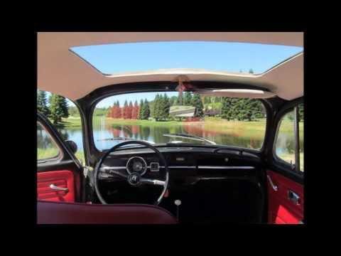 1967 VW BUG MOVIE