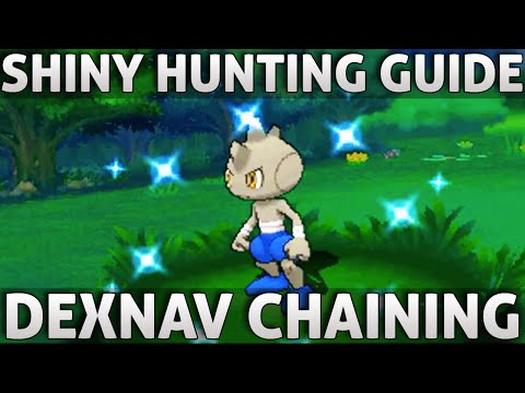 Pokemon ORAS: Shiny Hunting Guide | Dex Nav Chaining (Omega Ruby Alpha Sapphire)