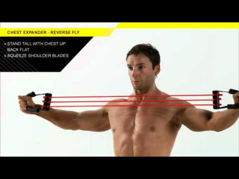 Chest Expander Reverse Fly YouTube