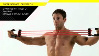 Chest Expander Reverse Fly