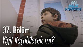 Gambar cover Yiğit, Vedat'ın elinden kaçabilecek mi? - Sen Anlat Karadeniz 37. Bölüm