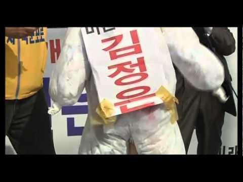Korean peninsular's effigy war