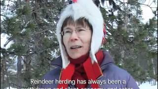 Last Yoik in Saami Forests?