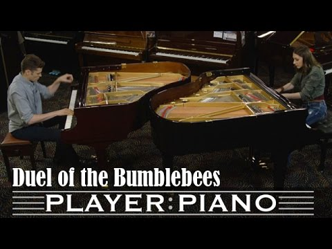 Duel of the Bumblebees - Sonya Belousova feat. Arturo Cardelús (dir: Tom Grey)