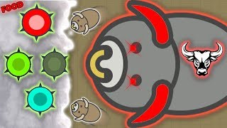 MOOMOO.IO NEW BULL ANIMAL, NEW CACTUS FOOD, NEW DESERT BIOME! (MooMoo.io)