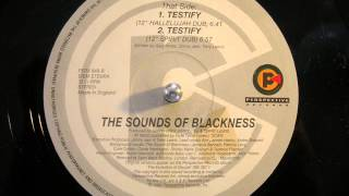 Sounds of Blackness   Testify (Hallelujah dub)