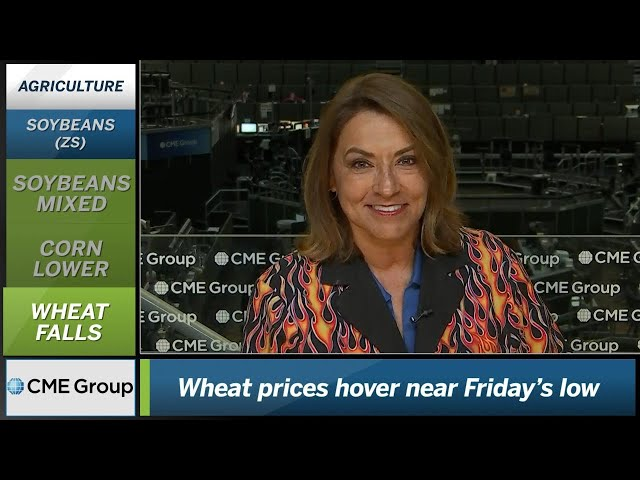 June 18 Grains Commentary: Virginia McGathey