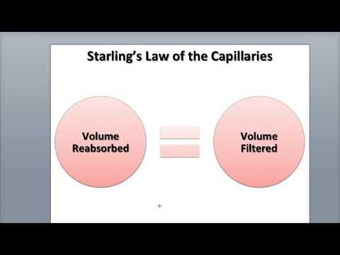 9-5 Capillary Exchange