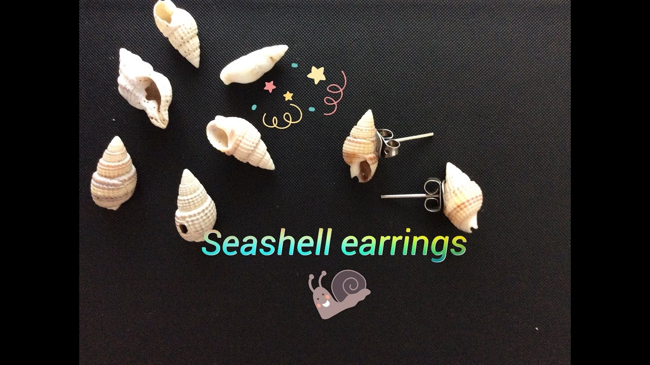 earrings sea pin yellow gold nice stud of solid pair seashell