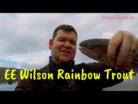Fishing EE Wilson Pond For Rainbow Trout