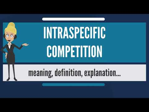 What Is INTRASPECIFIC COMPETITION? What Does INTRASPECIFIC COMPETITION Mean?