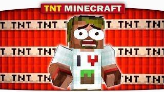 Таких Взрывов Вы Точно Не Видели! Minecraft vs TNT