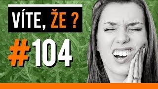 #104 ● VÍTE, ŽE...?