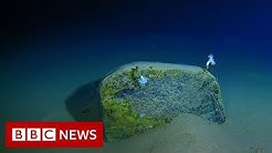Mariana Trench: Record-breaking journey to the bottom of the ocean - BBC News