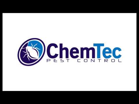 ChemTec Jingle