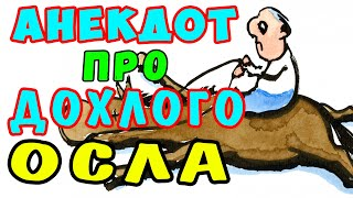 Смешной Еврейский АНЕКДОТ про Мойшу и Лотерею Самые смешные свежие анекдоты