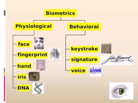 thesis report on iris recognition Seminar report on iris recognition a tool for modern security iris recognition is a biometric technology for identifying humans by capturing and analysing the unique patterns of the iris in the human eye.