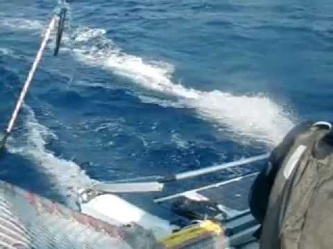 puntiroli oscar dudek pavol giro d'Italia 2011 catamarano mattia esse sport 18 real sailing italia 5