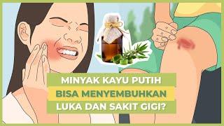 Viral! Sebenarnya Inilah Berbagai Manfaat Minyak Kayu Putih untuk Kesehatan!