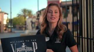V.I.P. Experience at Universal Studios Hollywood