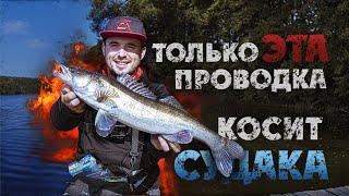 Ловля СУДАКА на ДЖИГ на незнакомом водоеме Как найти как ловить Рыбалка 2020