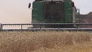 Кубанским аграриям компенсируют затраты на бензин