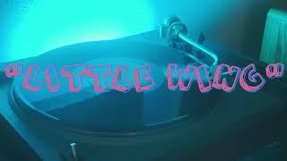 "VINYL: ""Little Wing"" - Layla Revisited (Live at Lockn') - Tedeschi Trucks Band w/ Trey Anastasio"