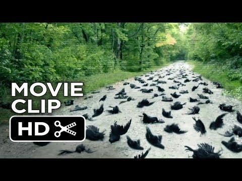 Alien Abduction Movie CLIP - Birds (2014) - Found Footage Sci-Fi Horror Movie HD