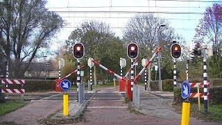 Spoorwegovergang Rotterdam // Dutch railroad crossing