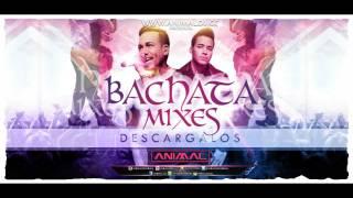 Bachata Mix 2  - Animal Dj (www.animaldj.co)