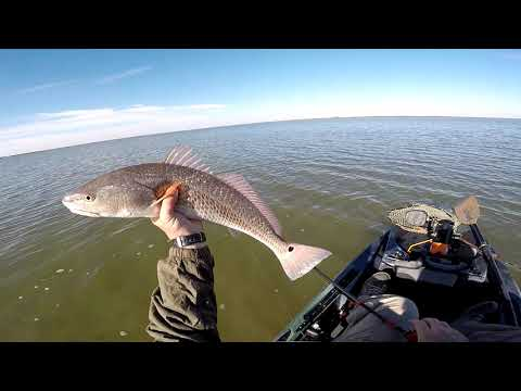 Cold Day In Heaven!!! Sightcasting Winter Redfish In Ultra Clear Water