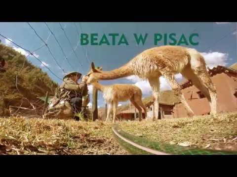 Dolina Patacancha (Alpacas), czyli wyprawy po Peru