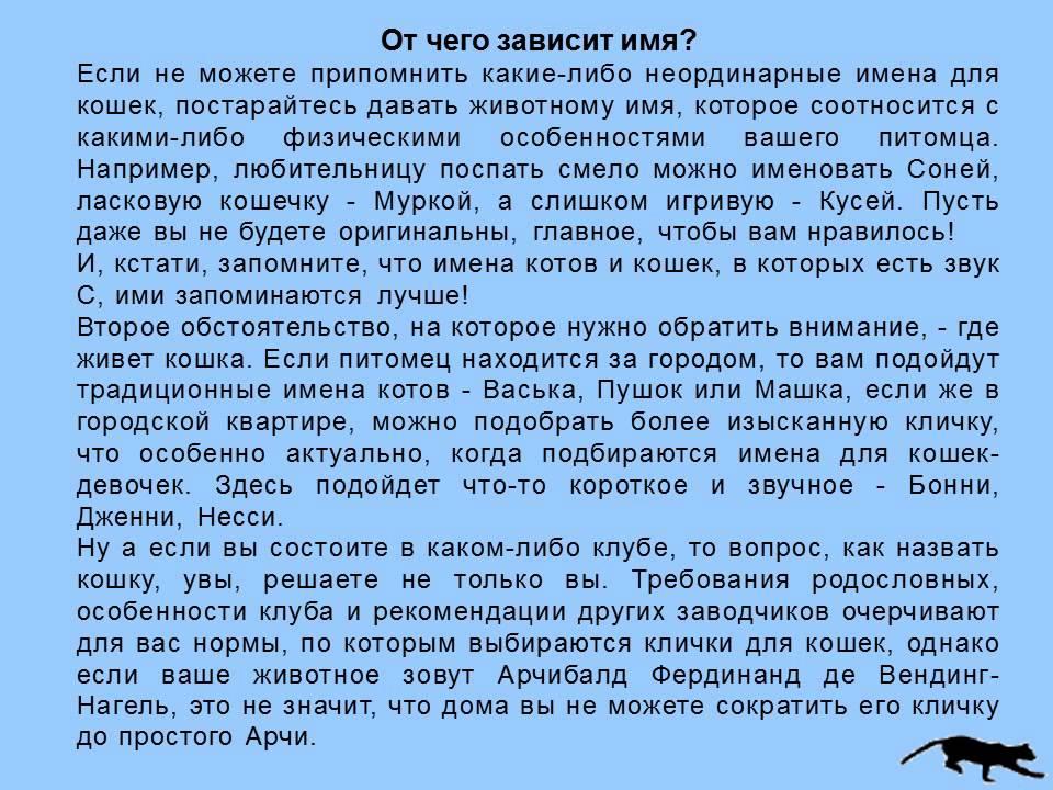 online Илья Николаевич