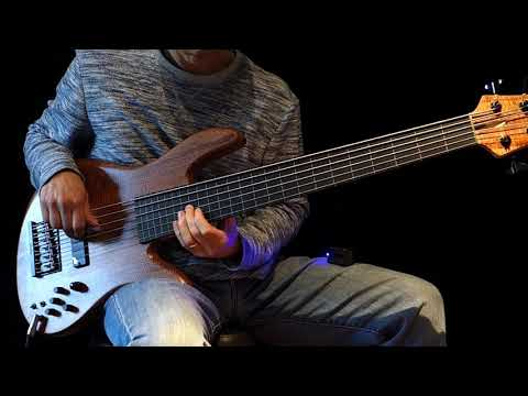 6 String Fretless Bass Solo & Ebow -