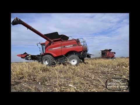 2013 Agricultural Season in Photos