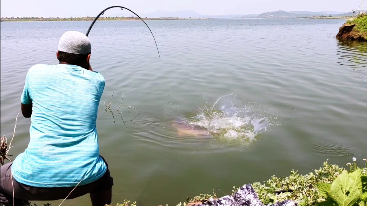 Big Rohu Fishing🎣|We Used to5Number Hook|Rohu FISHING|We Used Rice Bran Powder To Catch Those fishes