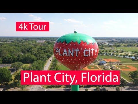 Plant City, Florida - 4k Aerial & Ground Level Tour