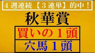 秋華賞2020 【買い1頭】【穴馬1頭】